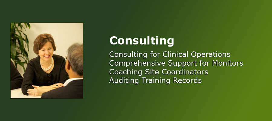 Consulting Services, P. Kasper and Associates